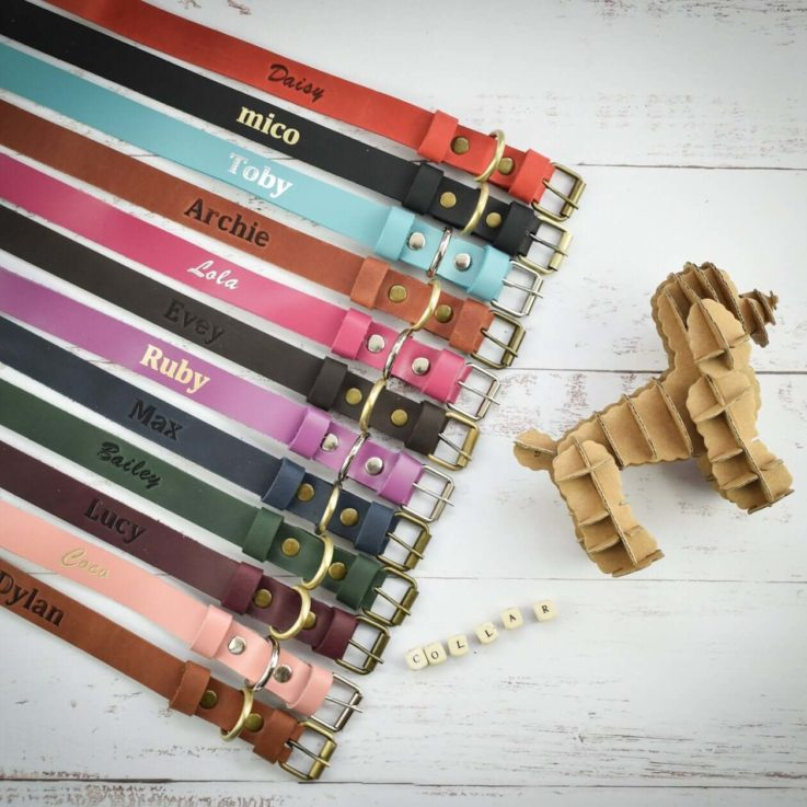 Personalized leather dog collar, cat collar