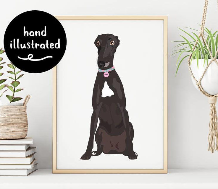 Custom Portrait of Pet Personalised Portrait Hand Drawn Illustration from Photo of Dog Cat Gift for Pet or Animal Lover