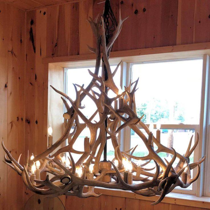 24 Antler, 27 Light Elk Antler Chandelier