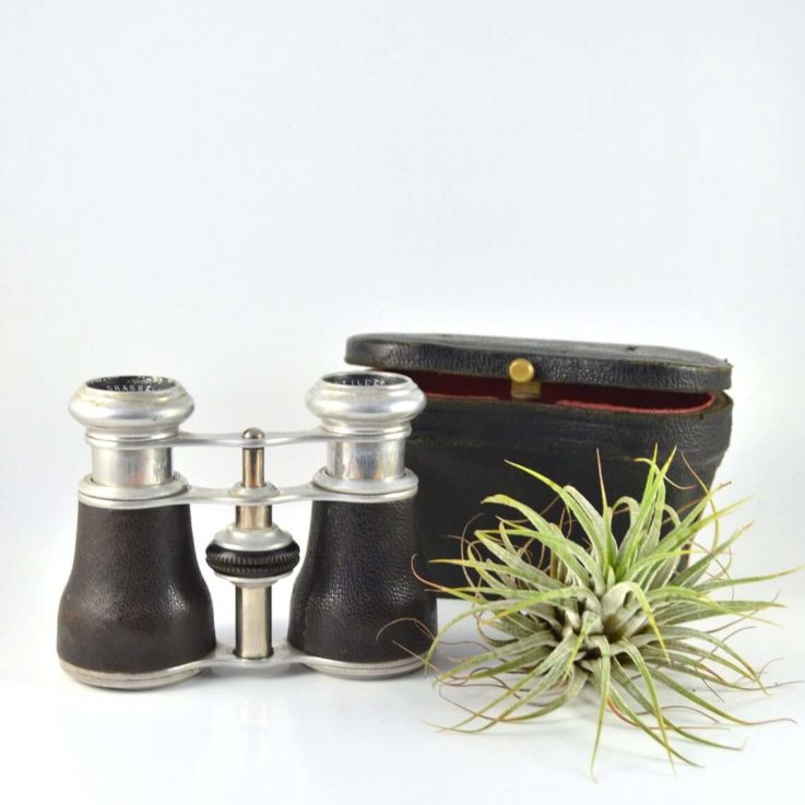 Antique Opera Glasses, Steampunk Decor, Antique Pocket Binoculars