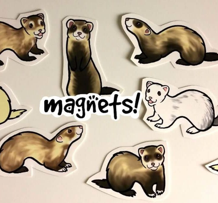 Cute Ferret Decorative Magnets Pack of 8