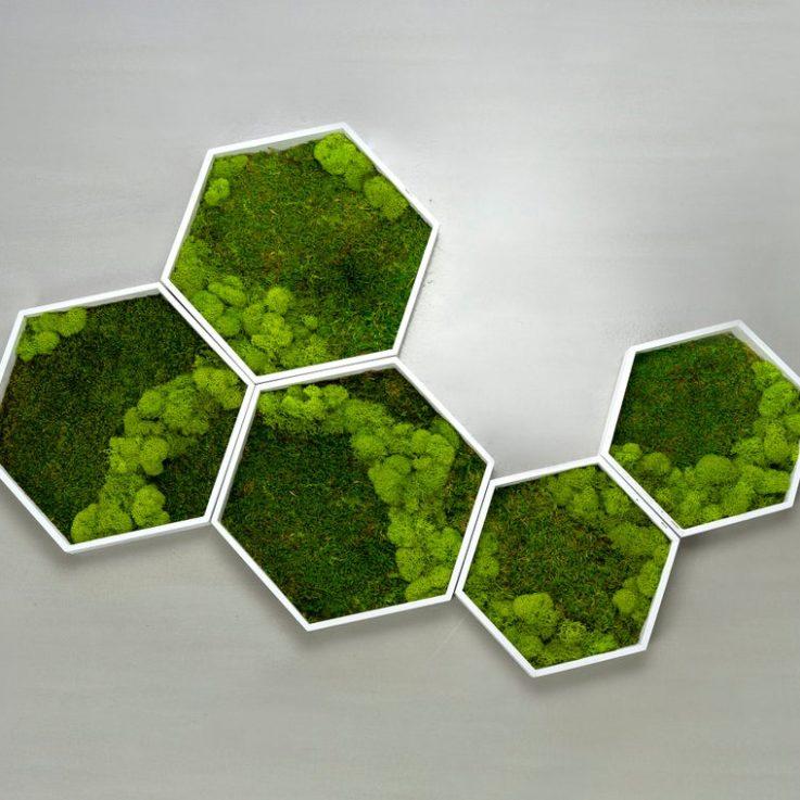 Moss Wall Green wall art Preserved moss Plant wall decor Plant wall art Moss wall art Honeycomb Hexagon Office decor