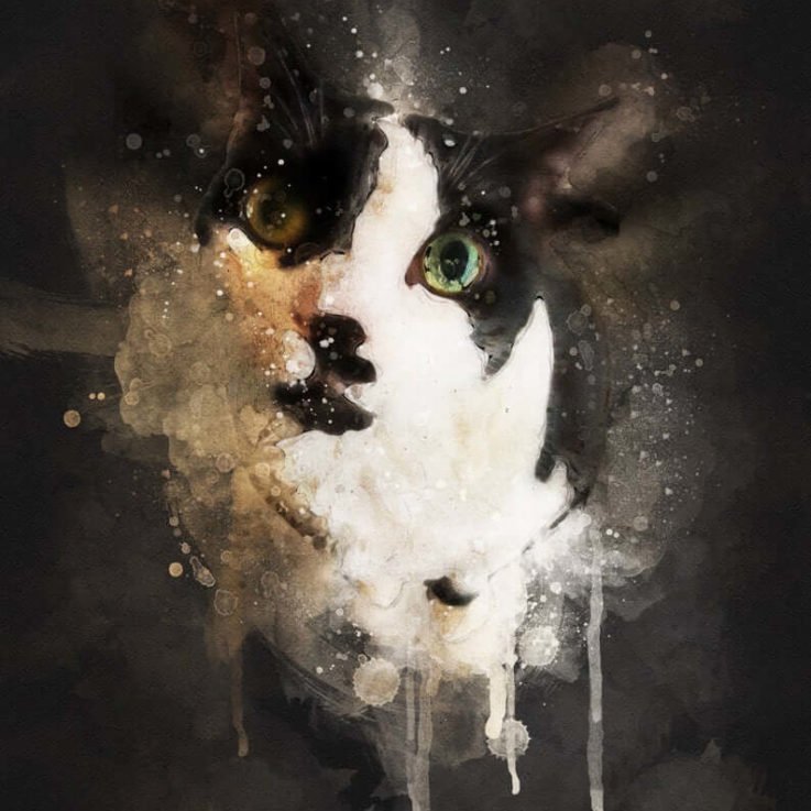 Watercolor Cat Portrait, Custom Pet Portrait, Painting From Photo, Gifts for Family